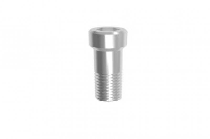 IMPLURA Abutment Screw